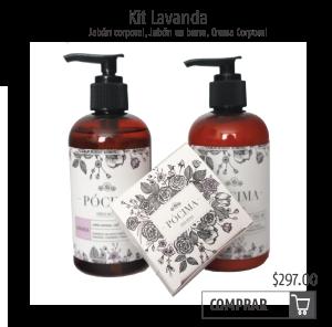 kit lavanda-01.png